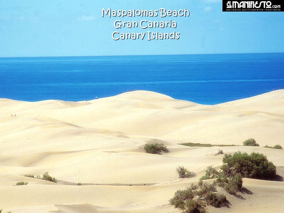 Corralejo Beach Fuerteventura Canary Islands