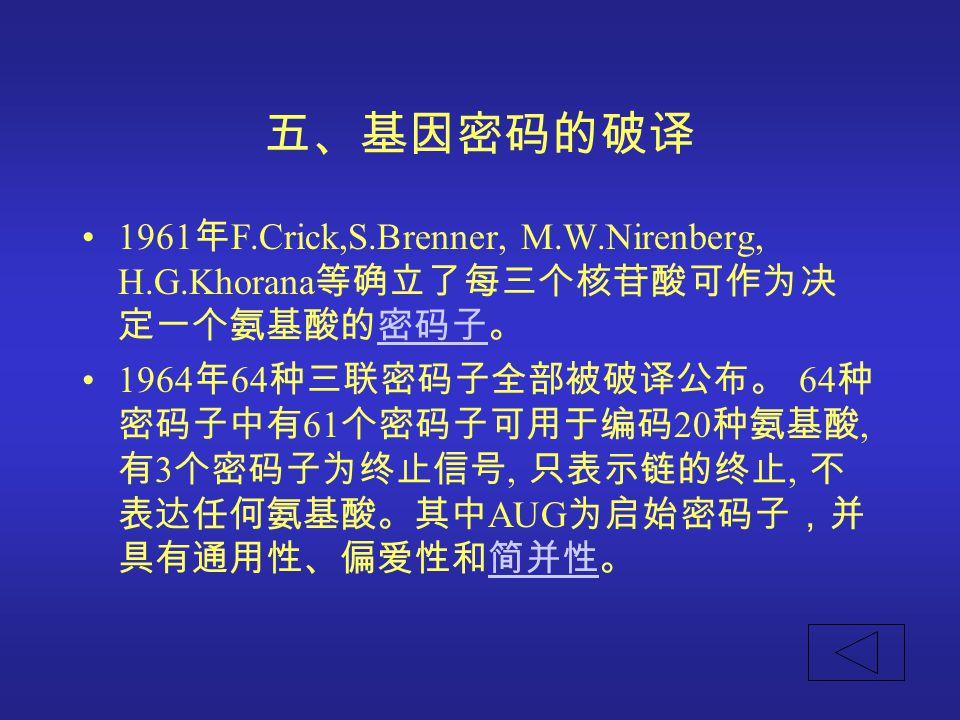 五、基因密码的破译 1961 年 F.Crick,S.Brenner, M.W.Nirenberg, H.G.Khorana 等确立了每三个核苷酸可作为决 定一个氨基酸的密码子。密码子 1964 年 64 种三联密码子全部被破译公布。 64 种 密码子中有 61 个密码子可用于编码 20 种氨基酸,
