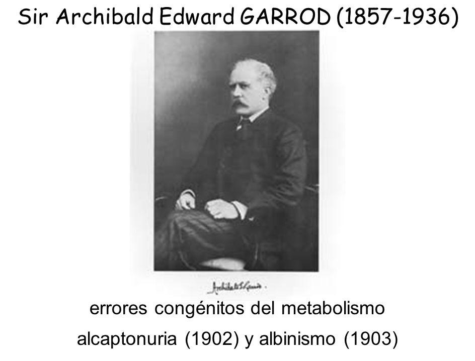 Sir Archibald Edward GARROD (1857-1936) errores congénitos del metabolismo alcaptonuria (1902) y albinismo (1903)