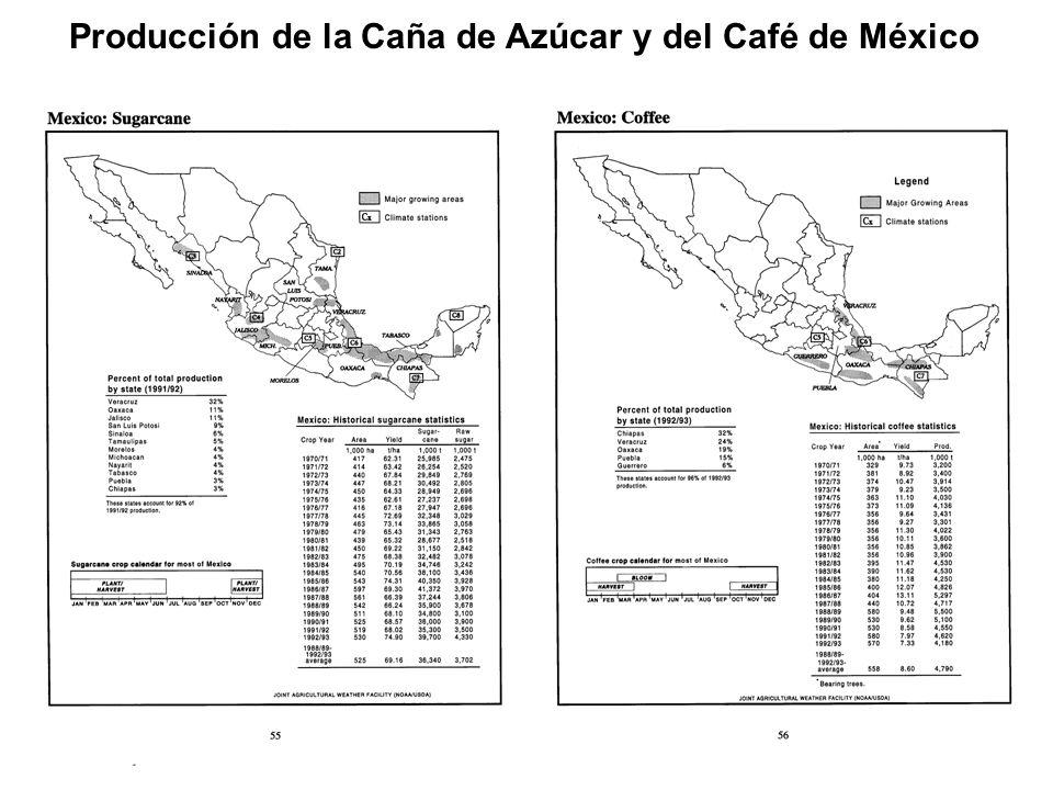 Producción de la Caña de Azúcar y del Café de México