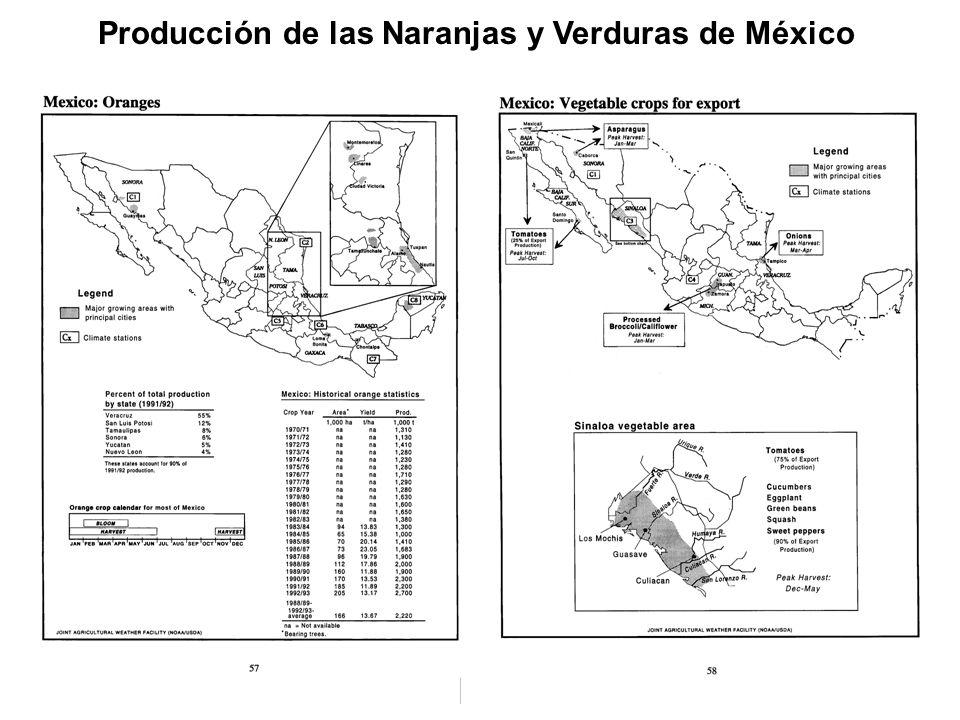 Producción de las Naranjas y Verduras de México
