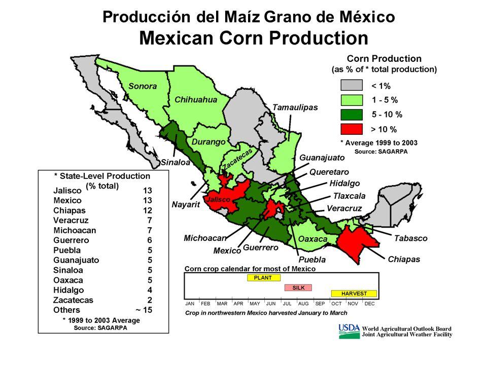 Producción del Maíz Grano de México