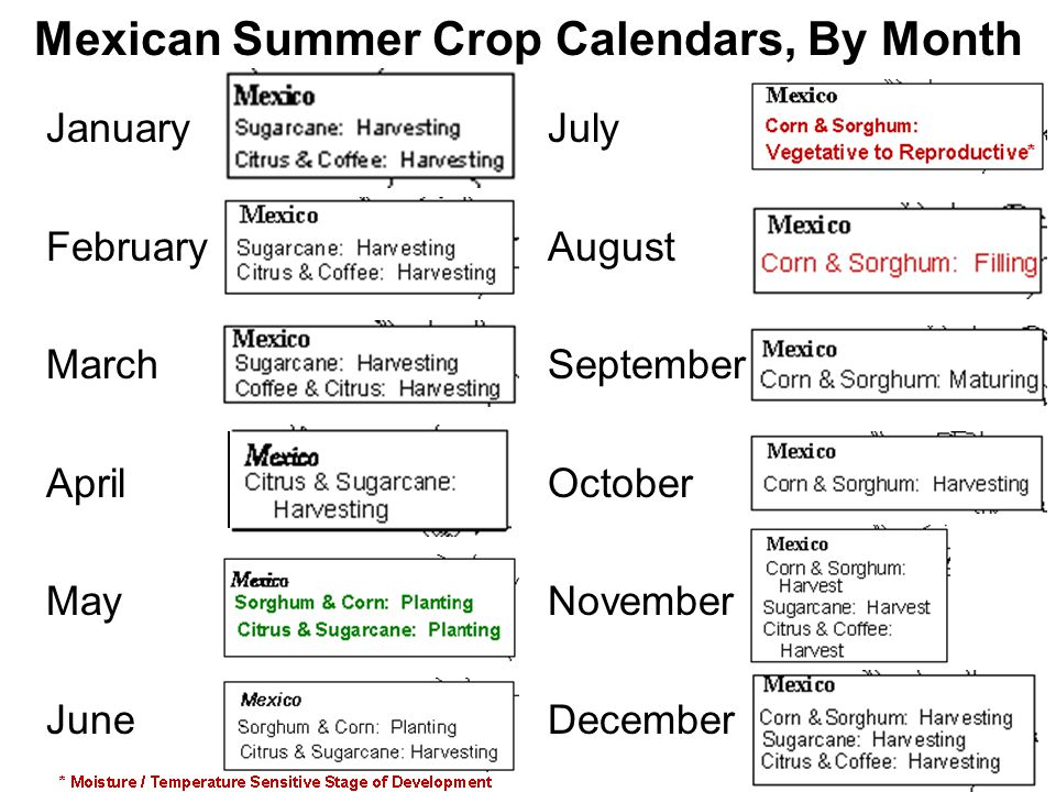 Mexican Summer Crop Calendars, By Month January July February August March September April October May November June December