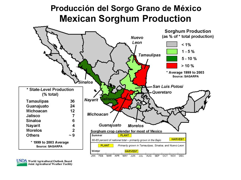 Mexican Corn Production Mexico Corn Production by District 50,000 – 200,000 mT 200,000 – 500,000 mT SOURCE: SAGARPA JANFEB MARAPRMAYJUNJULAUGSEPOCTNOVDEC Corn crop calendar for most of Mexico PLANT HARVEST SILK Crop in northwestern Mexico harvested January to March World Agricultural Outlook Board Joint Agricultural Weather Facility 10,000 – 50,000 mT > 500,000 mT
