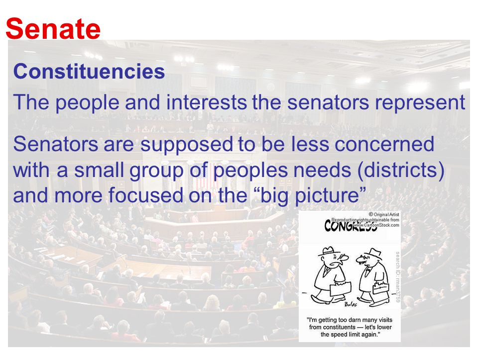 Senate Constituencies The people and interests the senators represent Senators are supposed to be less concerned with a small group of peoples needs (districts) and more focused on the big picture