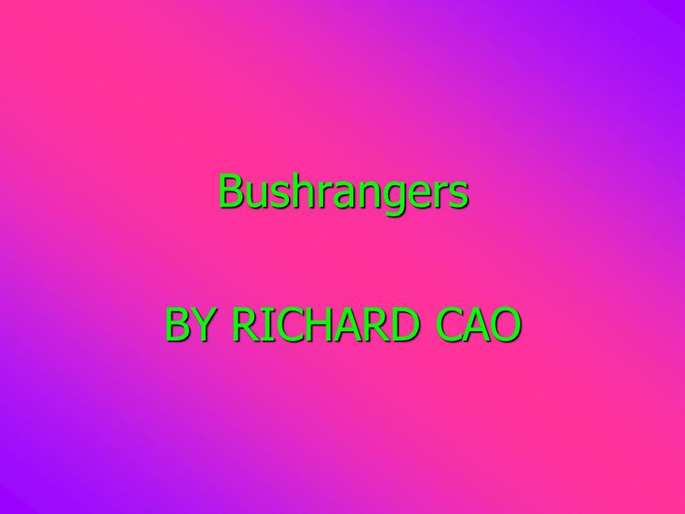 Bushrangers BY RICHARD CAO
