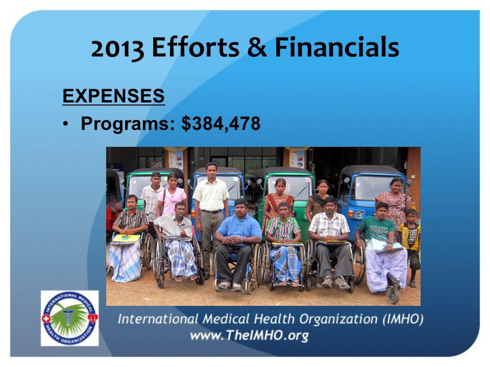 2013 Efforts & Financials EXPENSES Programs: $384,478