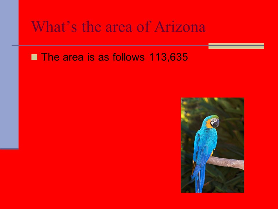 What's the area of Arizona The area is as follows 113,635
