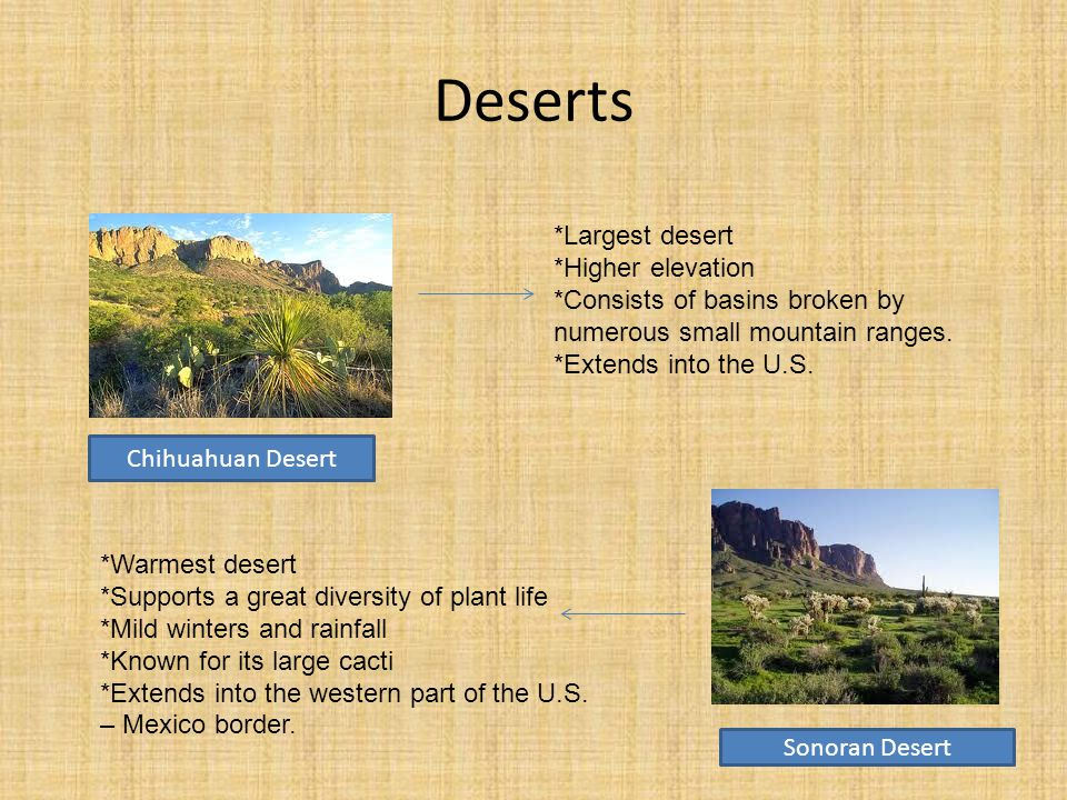 Deserts Sonoran Desert Chihuahuan Desert *Largest desert *Higher elevation *Consists of basins broken by numerous small mountain ranges.