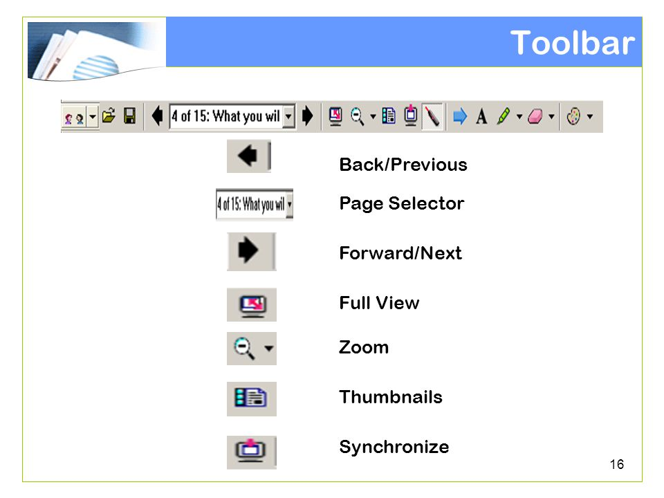 16 Toolbar Full View Zoom Thumbnails Synchronize Forward/Next Page Selector Back/Previous