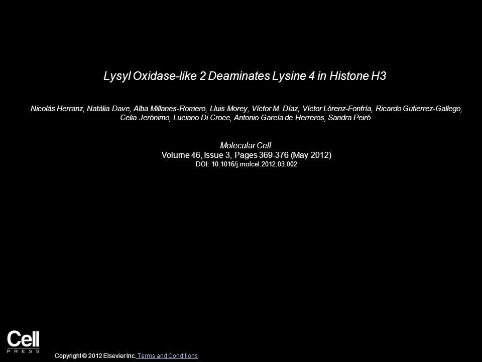 Lysyl Oxidase-like 2 Deaminates Lysine 4 in Histone H3 Nicolás Herranz, Natàlia Dave, Alba Millanes-Romero, Lluis Morey, Víctor M. Díaz, Víctor Lórenz