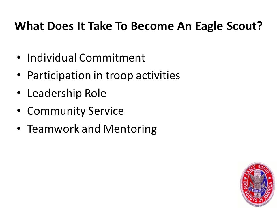 What Does It Take To Become An Eagle Scout.