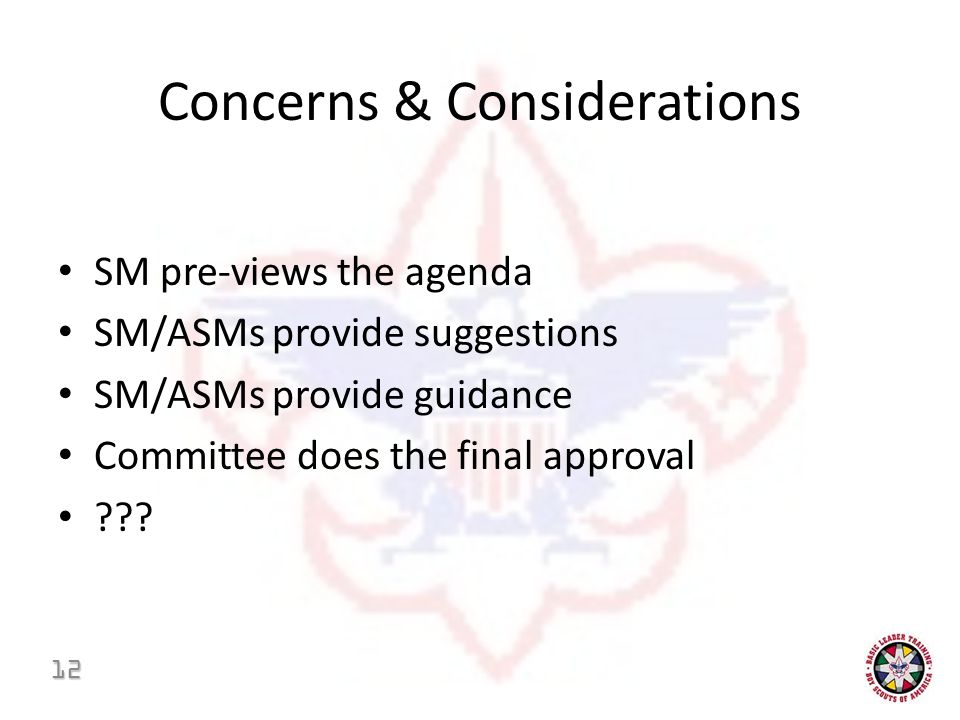 Concerns & Considerations SM pre-views the agenda SM/ASMs provide suggestions SM/ASMs provide guidance Committee does the final approval .