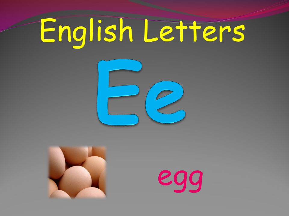English Letters dog