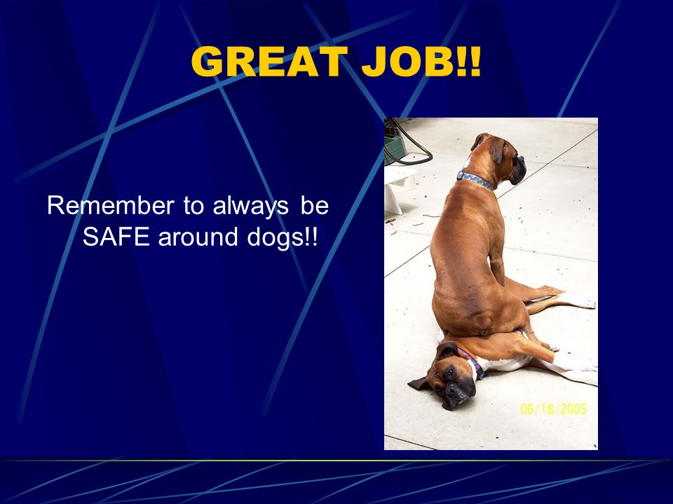 GREAT JOB!! Remember to always be SAFE around dogs!!