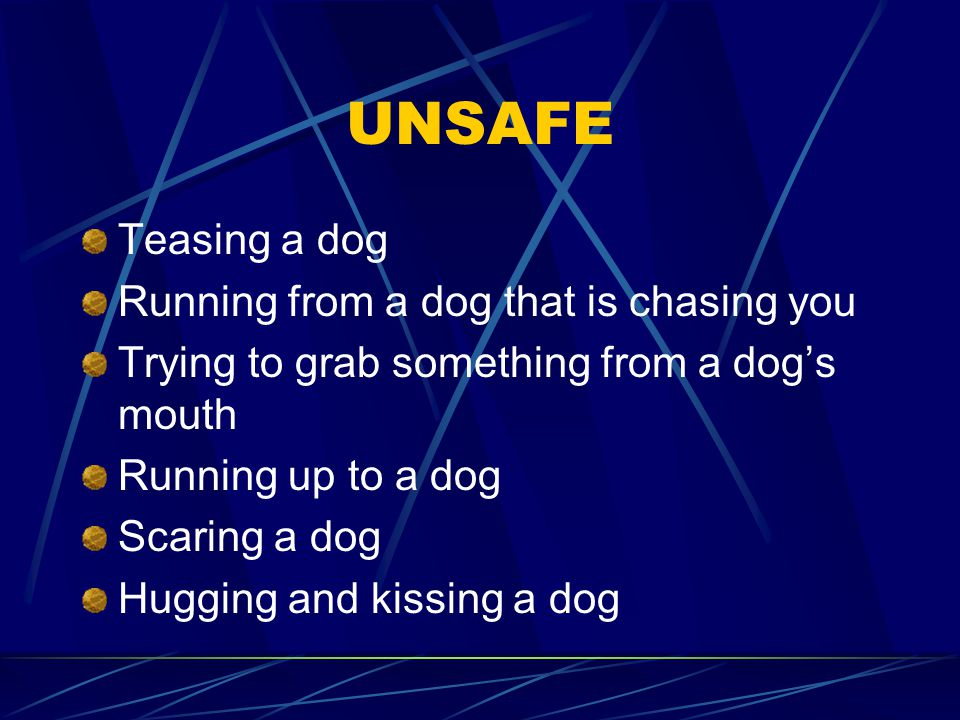 UNSAFE Teasing a dog Running from a dog that is chasing you Trying to grab something from a dog's mouth Running up to a dog Scaring a dog Hugging and kissing a dog