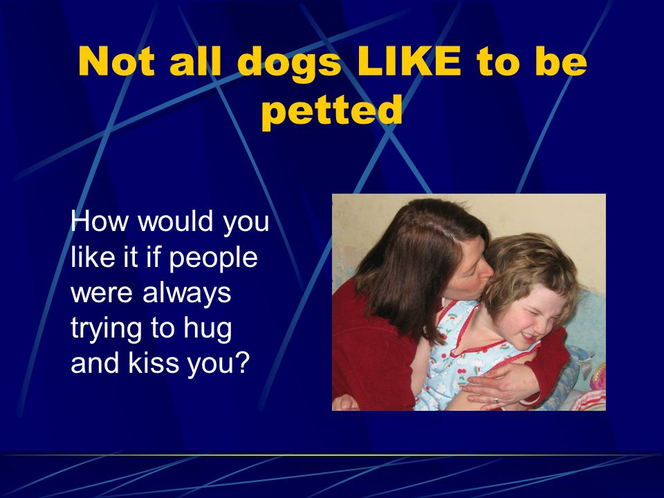 Not all dogs LIKE to be petted How would you like it if people were always trying to hug and kiss you