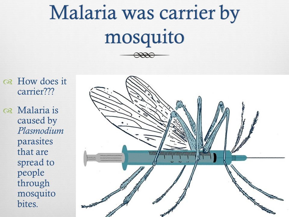 a history of malaria and other diseases caused by the mosquito Home history journey of scientific discoveries the continuous fever of other infectious diseases demonstrate that human malaria was caused by a mosquito.