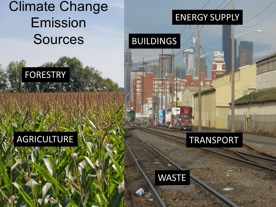 TRANSPORT ENERGY SUPPLY BUILDINGS AGRICULTURE FORESTRY Climate Change Emission Sources WASTE