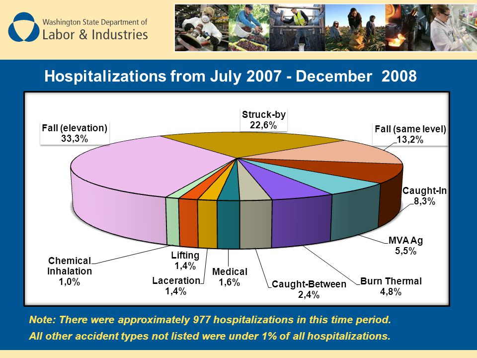 Hospitalizations from July December 2008 Note: There were approximately 977 hospitalizations in this time period.