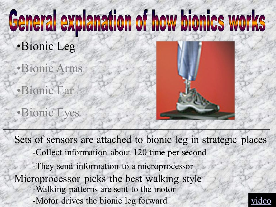 Bionic Leg Bionic Arms Bionic Ear Bionic Eyes __________________________________________________________ Sets of sensors are attached to bionic leg in strategic places -Collect information about 120 time per second -They send information to a microprocessor Microprocessor picks the best walking style -Walking patterns are sent to the motor -Motor drives the bionic leg forwardvideo