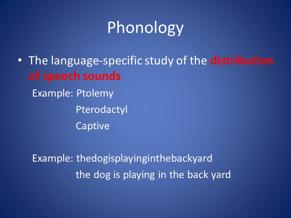 Phonology The language-specific study of the distribution of speech sounds Example: Ptolemy Pterodactyl Captive Example: thedogisplayinginthebackyard the dog is playing in the back yard