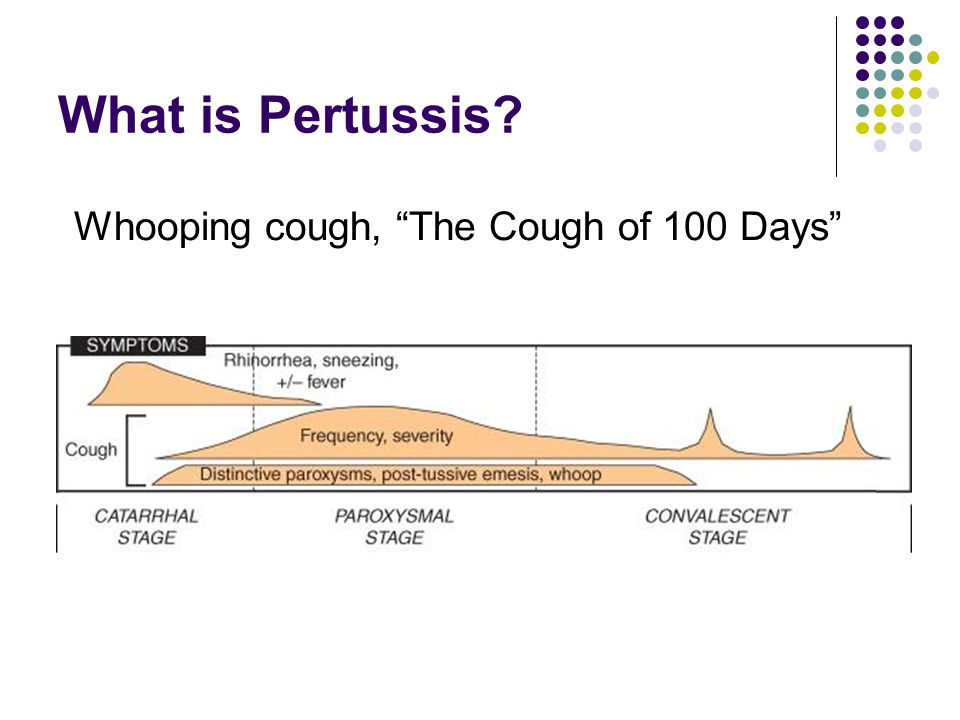 What is Pertussis Whooping cough, The Cough of 100 Days