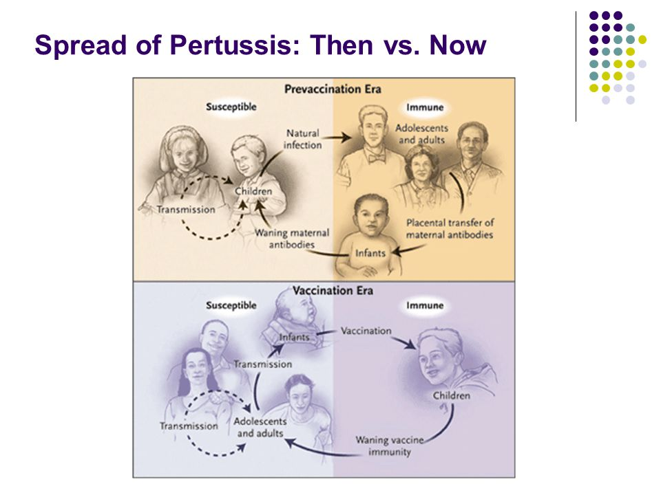 Spread of Pertussis: Then vs. Now