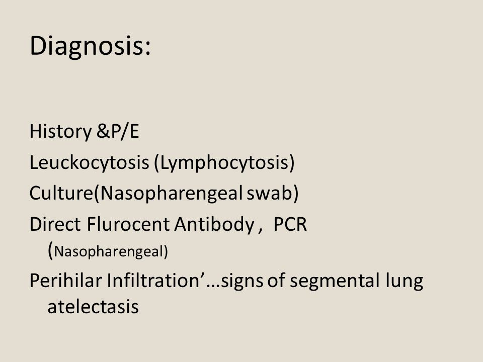 Diagnosis: History &P/E Leuckocytosis (Lymphocytosis) Culture(Nasopharengeal swab) Direct Flurocent Antibody, PCR ( Nasopharengeal) Perihilar Infiltration'…signs of segmental lung atelectasis