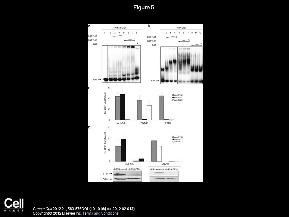 Figure 6 Cancer Cell 2012 21, 563-576DOI: (10.1016/j.ccr.2012.02.013) Copyright © 2012 Elsevier Inc.