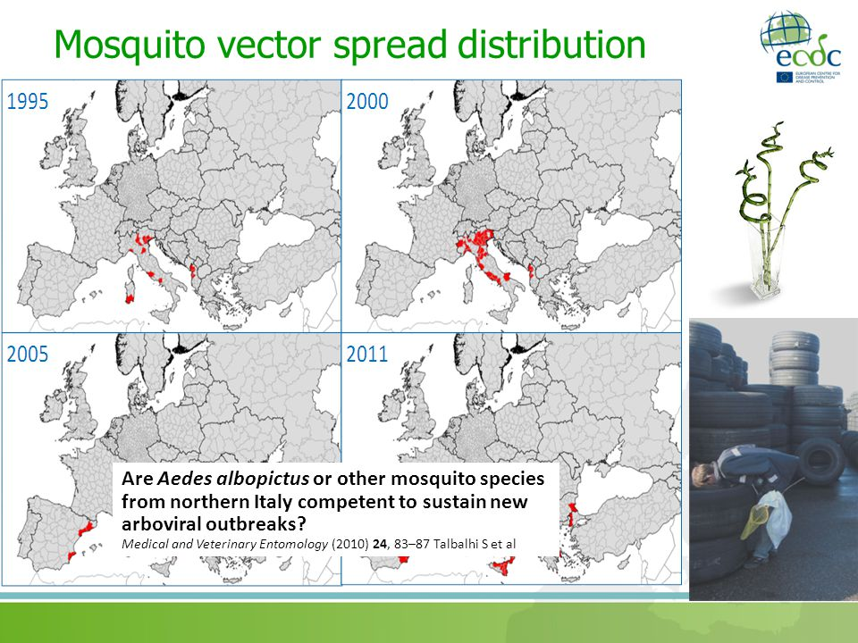 Mosquito vector spread distribution Are Aedes albopictus or other mosquito species from northern Italy competent to sustain new arboviral outbreaks.