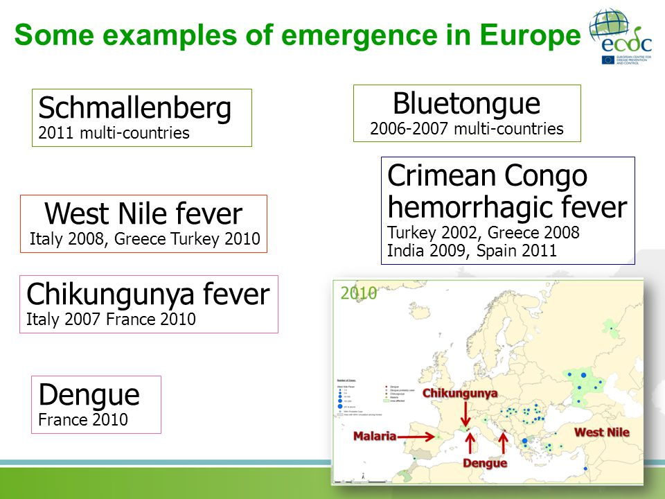 Some examples of emergence in Europe Chikungunya fever Italy 2007 France 2010 West Nile fever Italy 2008, Greece Turkey 2010 Crimean Congo hemorrhagic fever Turkey 2002, Greece 2008 India 2009, Spain 2011 Bluetongue multi-countries Schmallenberg 2011 multi-countries Dengue France 2010