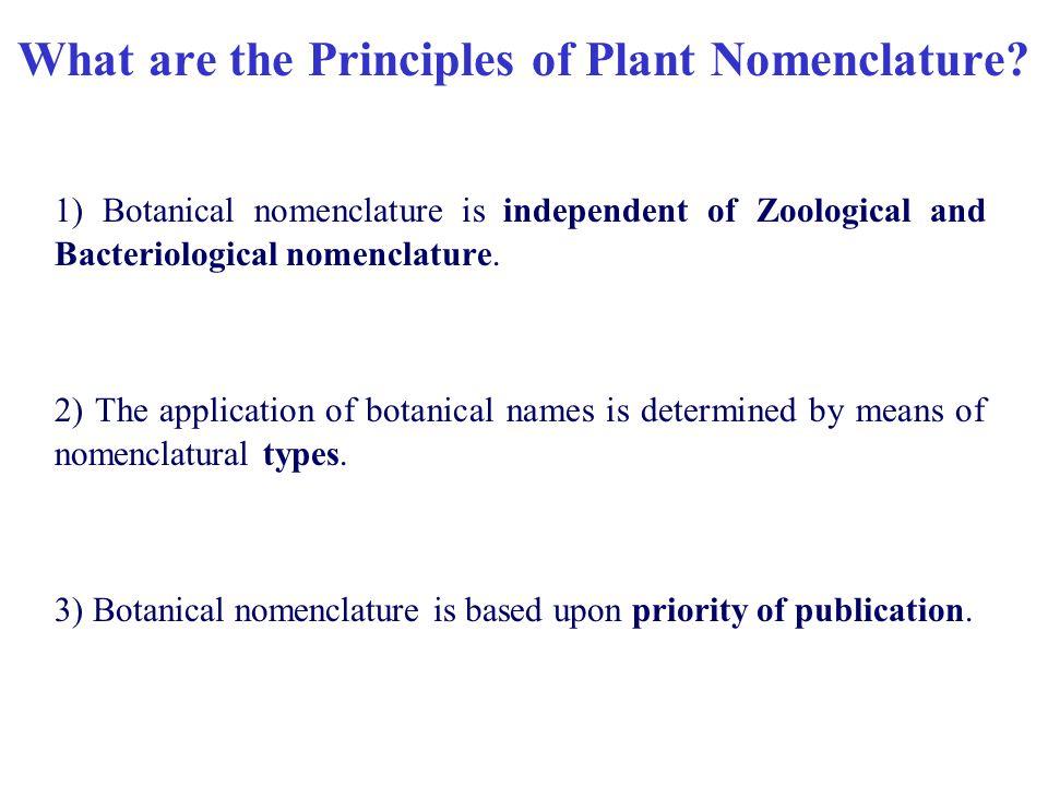 What is nomenclature?