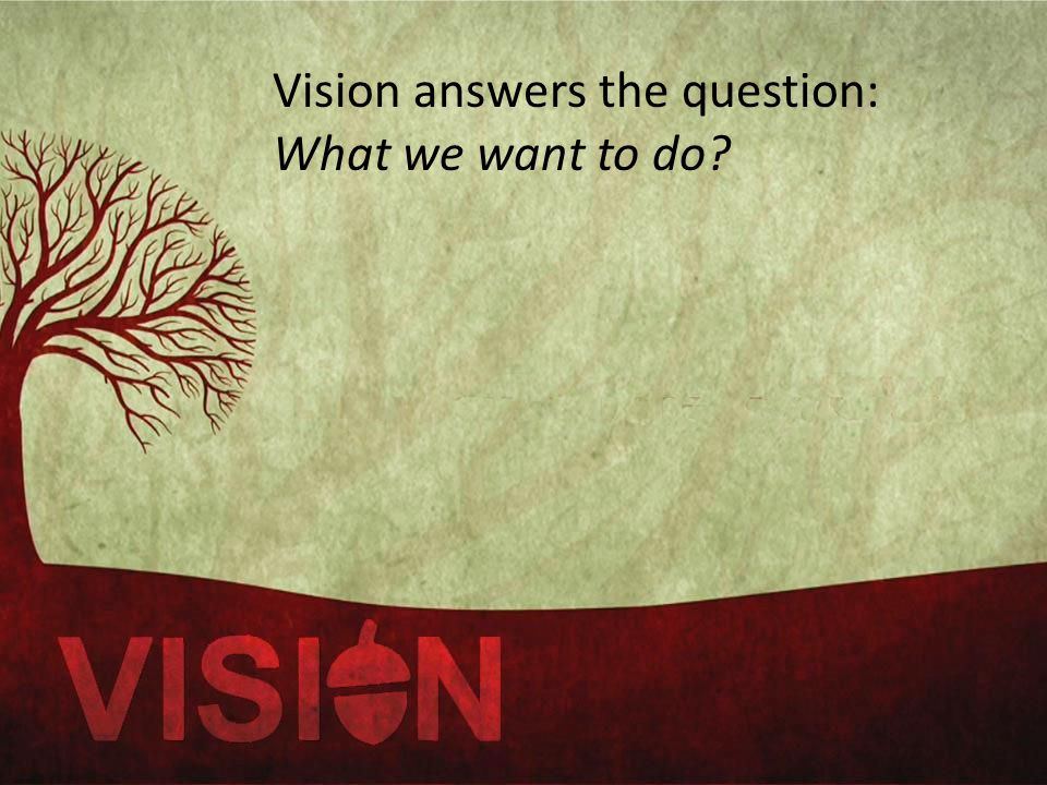Vision answers the question: What we want to do