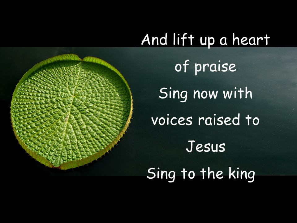 And lift up a heart of praise Sing now with voices raised to Jesus Sing to the king