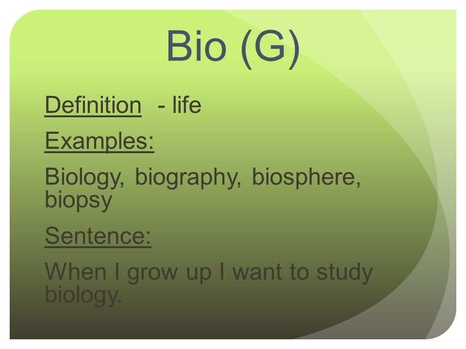 Write my definition biography