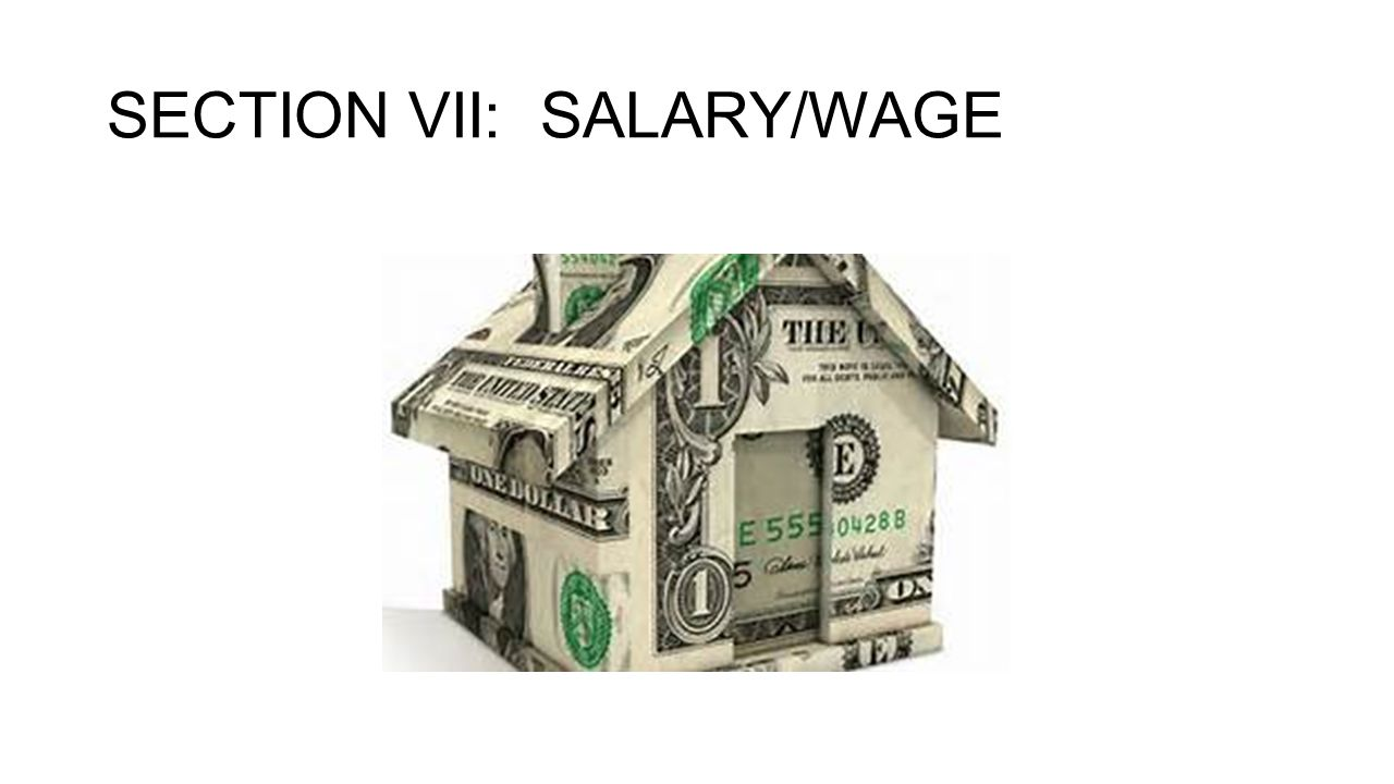 SECTION VII: SALARY/WAGE