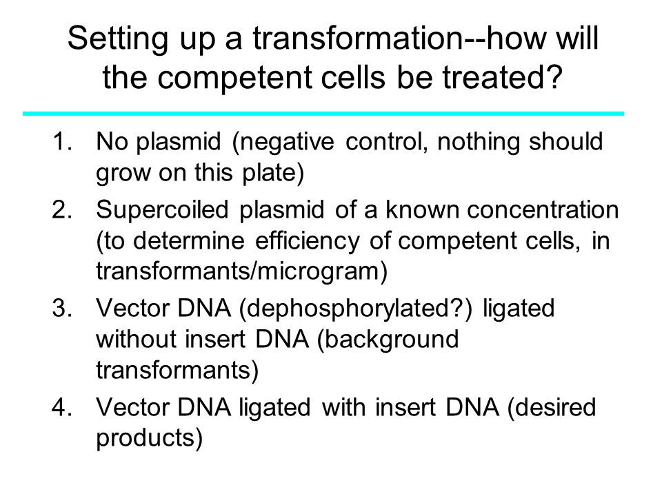 "Presentation ""Setting up a transformation--how will the competent ..."