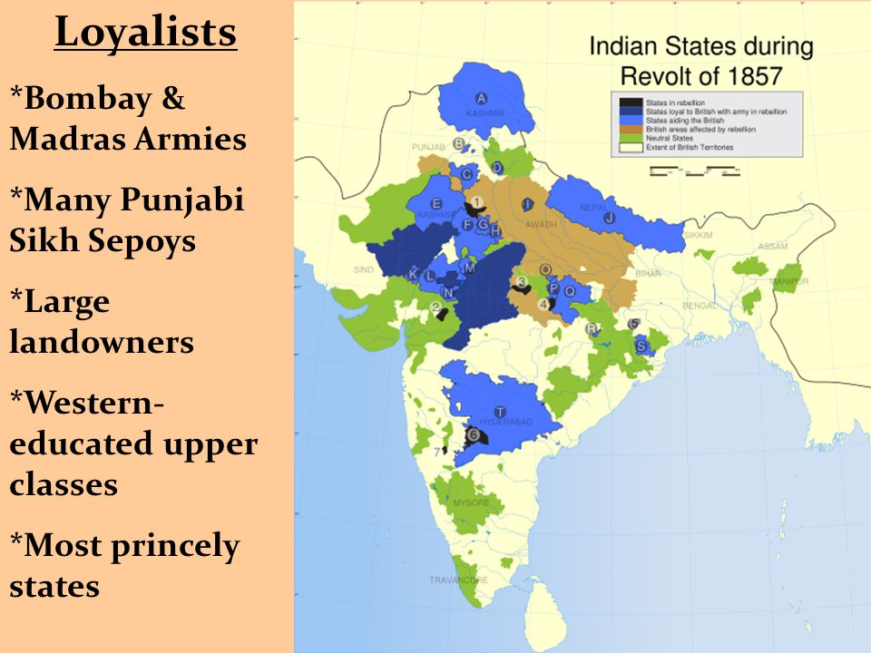Loyalists *Bombay & Madras Armies *Many Punjabi Sikh Sepoys *Large landowners *Western- educated upper classes *Most princely states