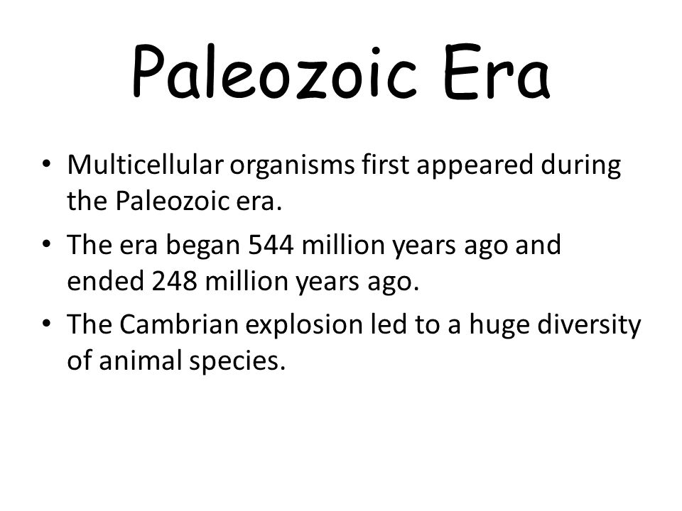 Paleozoic Era Multicellular organisms first appeared during the Paleozoic era.