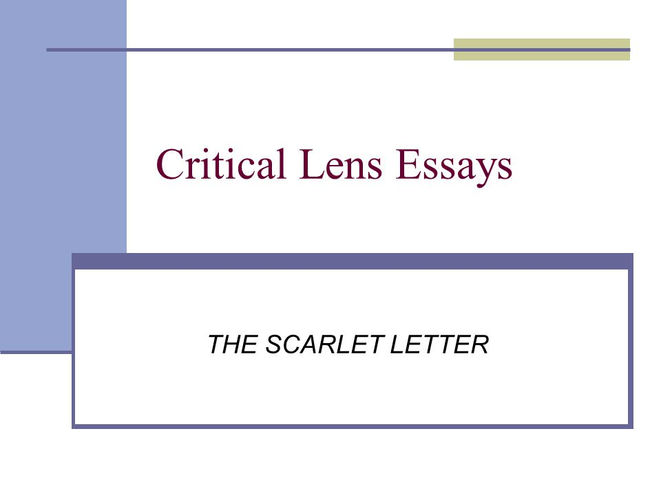 Essays on the scarlet letter