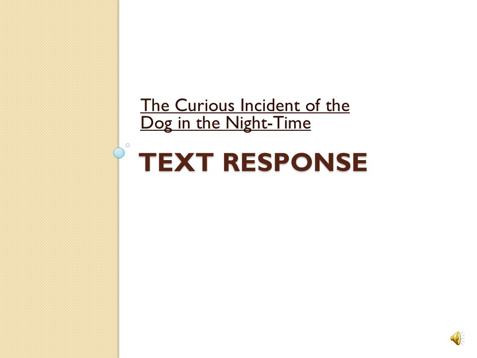 the curious incident of the dog in the nighttime essay the curious incident of the dog in the nighttime essay get help from