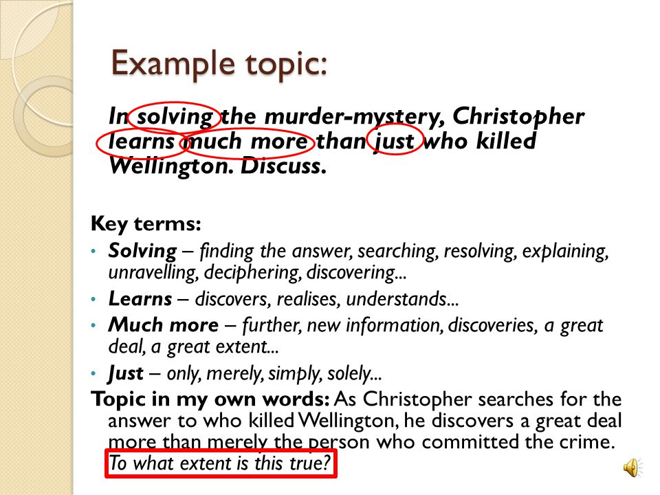 definition essay murder