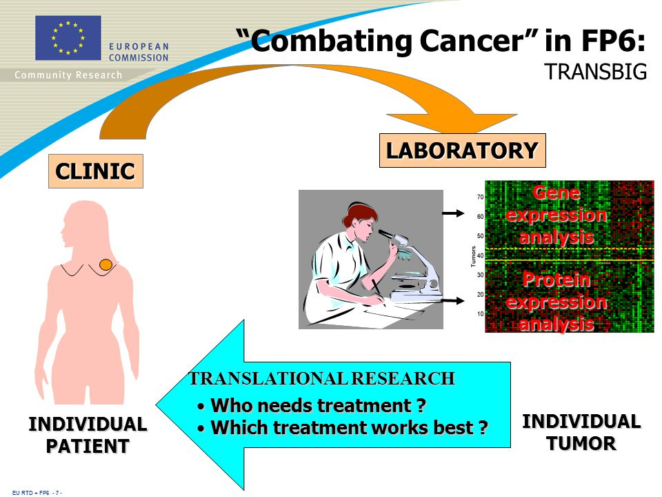 EU RTD + FP CLINIC INDIVIDUAL PATIENT INDIVIDUAL TUMOR Gene expression analysis Protein expression analysis Combating Cancer in FP6: TRANSBIG LABORATORY TRANSLATIONAL RESEARCH Who needs treatment .