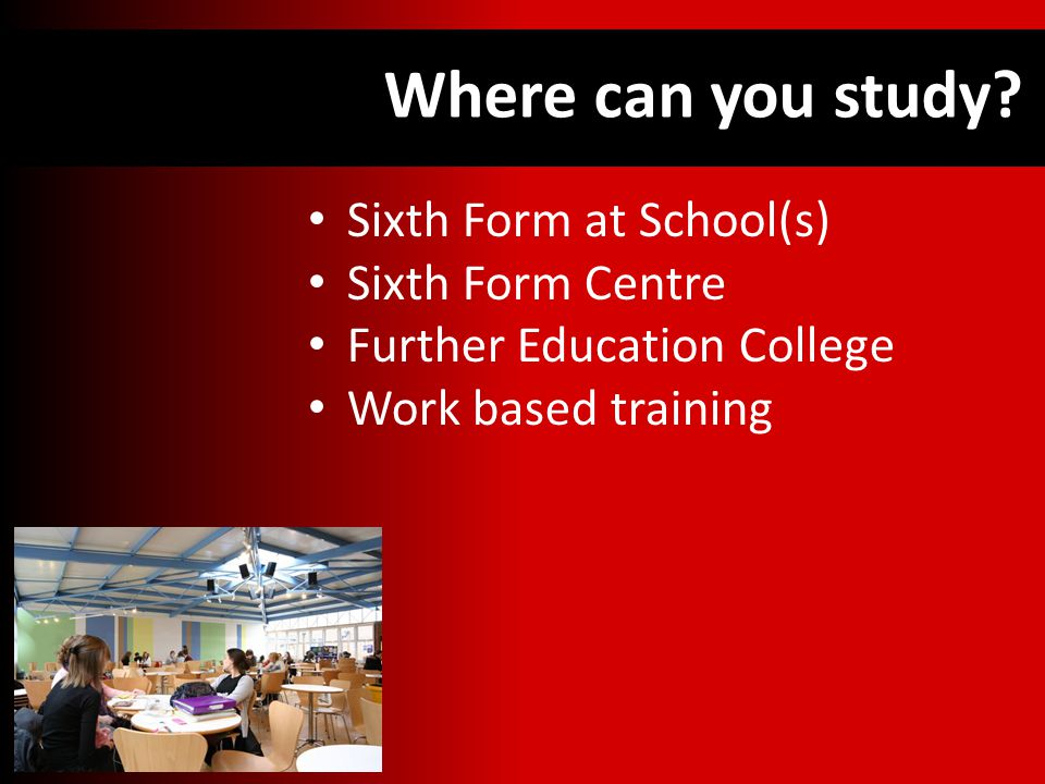 Where can you study.