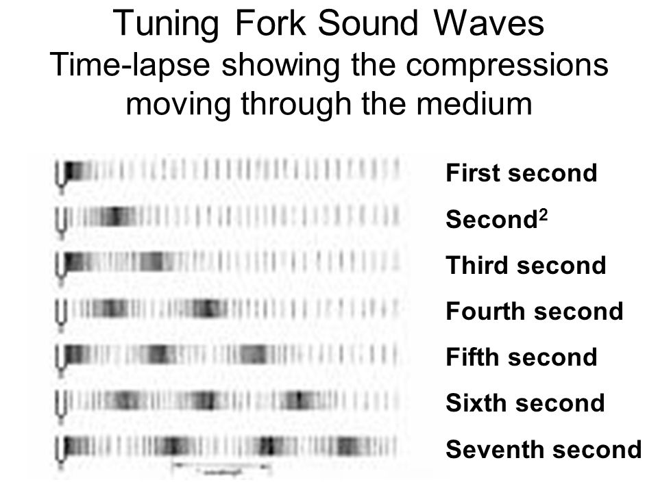 Tuning Fork Sound Waves Time-lapse showing the compressions moving through the medium First second Second 2 Third second Fourth second Fifth second Sixth second Seventh second