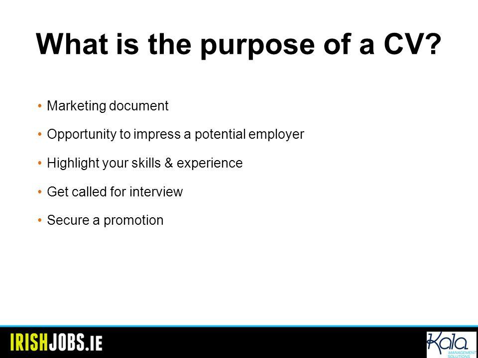 cv of managing director