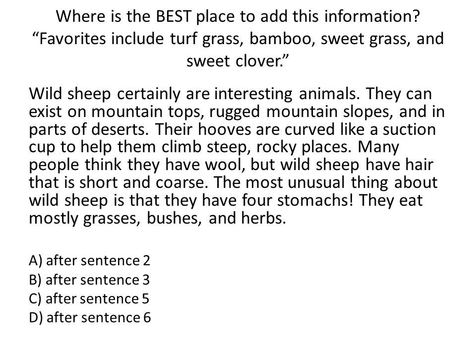 "Where is the BEST place to add this information? ""Favorites include turf grass, bamboo, sweet grass, and sweet clover."" Wild sheep certainly are inter"