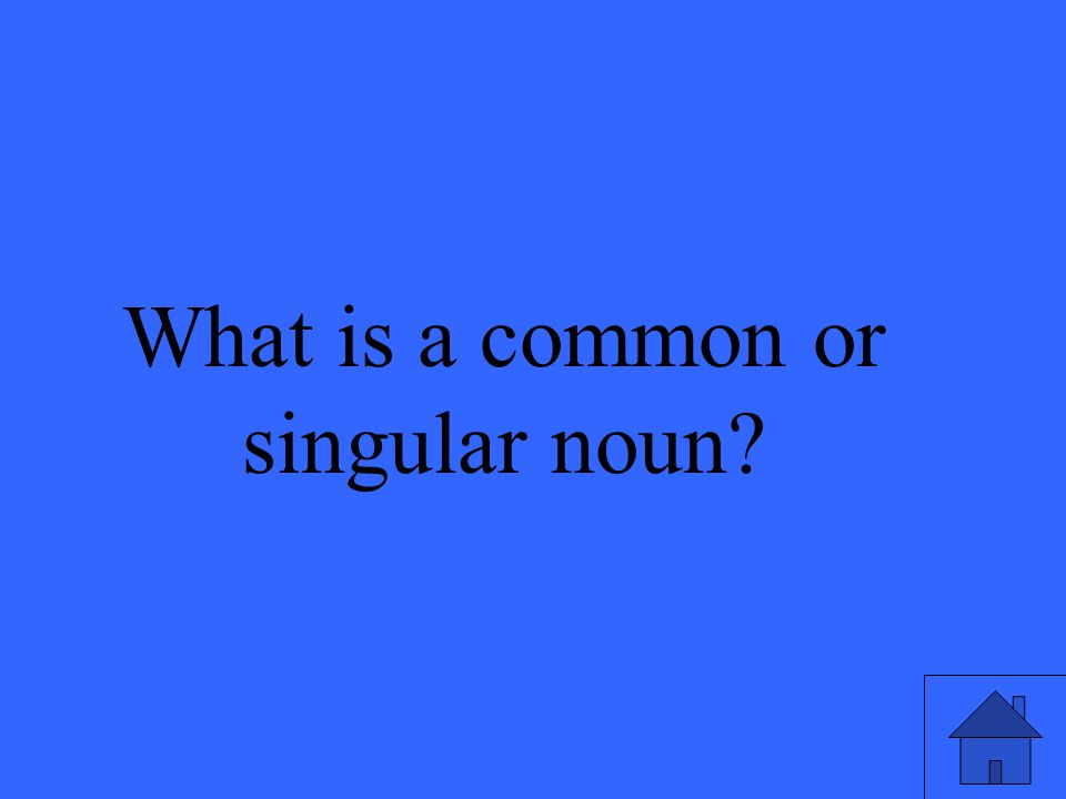 What is a common or singular noun