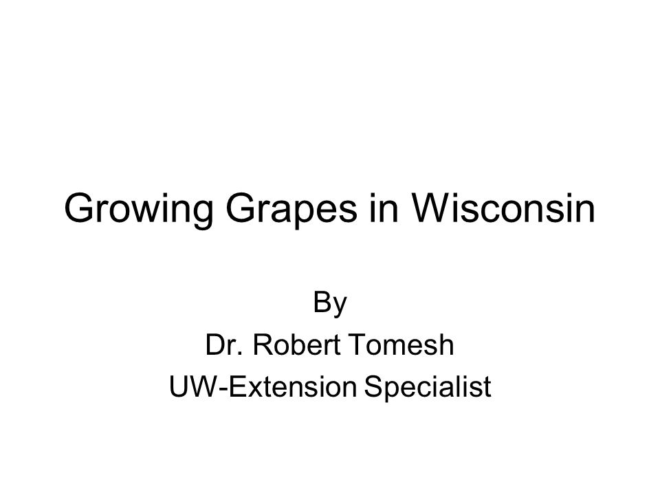 Growing Grapes in Wisconsin By Dr. Robert Tomesh UW-Extension Specialist